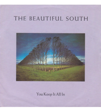 """The Beautiful South - You Keep It All In (7"""", Single, Inj) mesvinyles.fr"""
