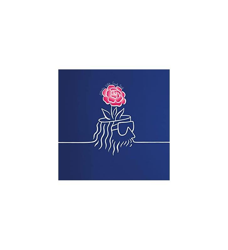 Sébastien Tellier - Simple Mind (LP) mesvinyles.fr