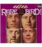 Rare Bird - Attention! Rare...