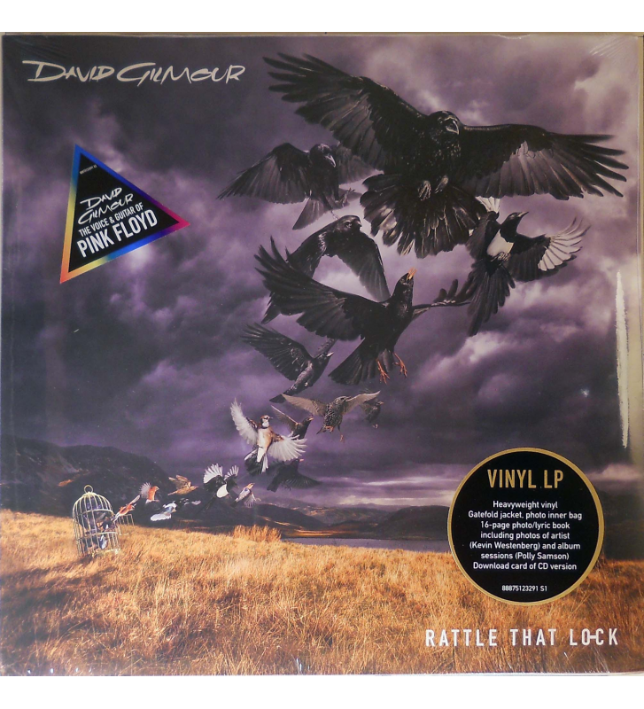 DAVID GILMOUR - rattle that lock mesvinyles.fr