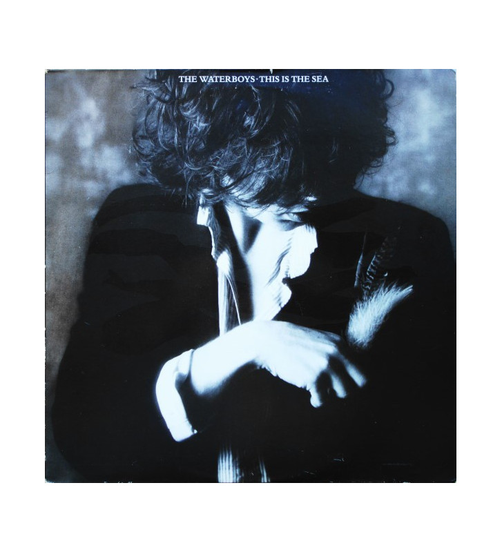 The Waterboys - This Is The Sea (LP, Album) mesvinyles.fr