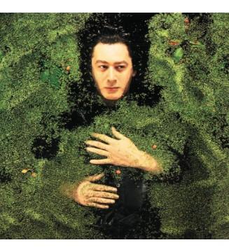 Alain Bashung - Fantaisie Militaire (LP, Album)