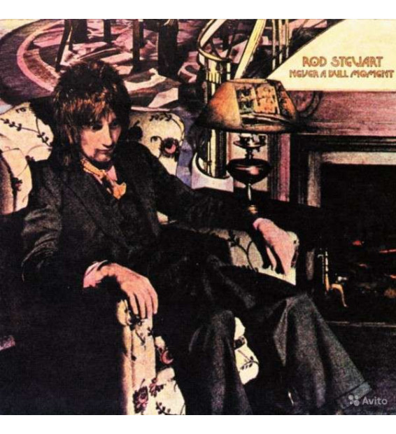 Rod Stewart - Never A Dull Moment (LP, Album, RE, 180)