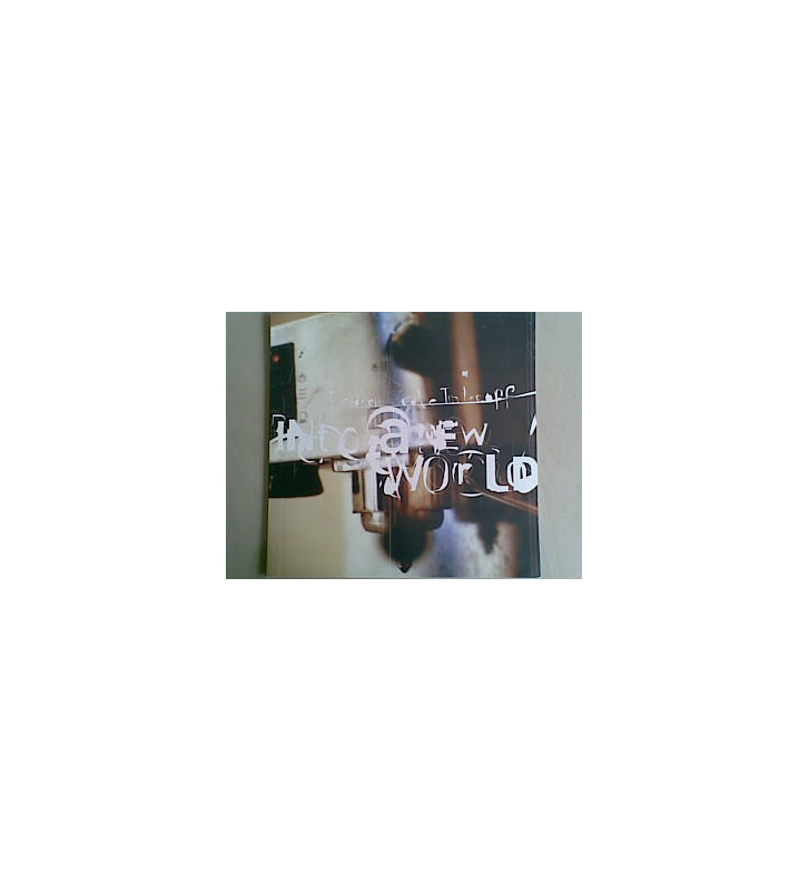 Frédéric Cole Tinteroff - Into A New World (LP) mesvinyles.fr