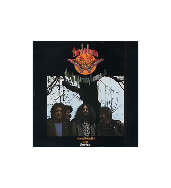 Barclay James Harvest - Early Morning Onwards (LP, Comp)