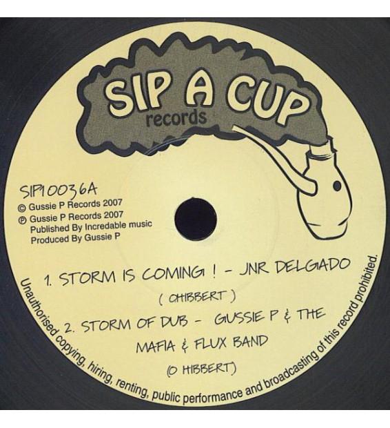 "JNR Delgado* / Mafia & Flux* - Storm Is Coming! / So So Ah Rock! (10"") mesvinyles.fr"