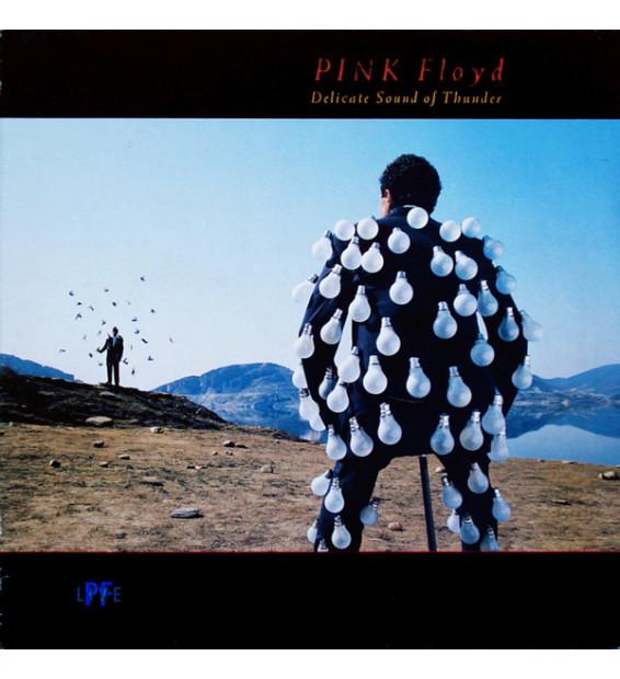 Pink Floyd - Delicate Sound Of Thunder (2xLP, Album)
