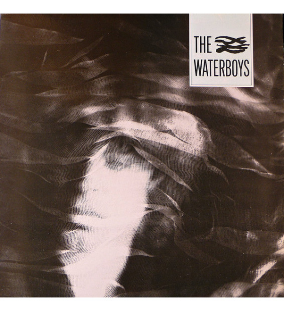 The Waterboys - The Waterboys (LP, Album) mesvinyles.fr