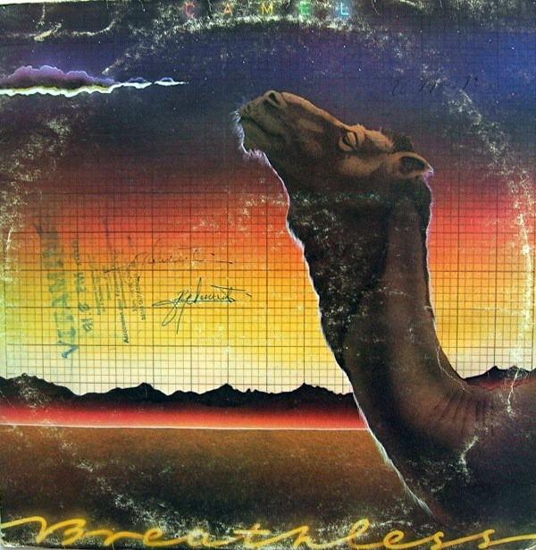 camel breathless